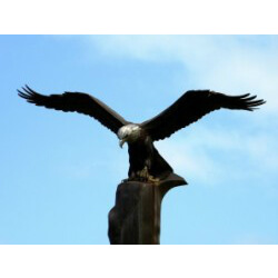 Eagle Landmark – Sculpture