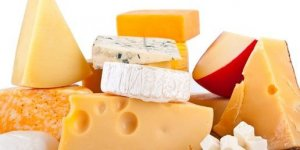 More Cheese Making (Cheddar and Gouda) @ Driftless Folk School | Viroqua | Wisconsin | United States