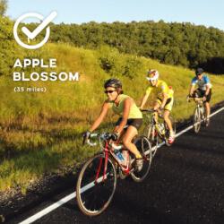 Apple Blossom Loop
