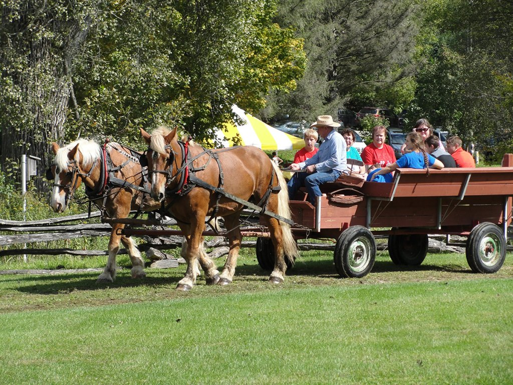 A Threshing Bee Vacation @ Norskedalen Nature & Heritage Center