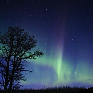 SeptOberfest - Capture the Northern Lights! @ National Eagle Center | Wabasha | Minnesota | United States