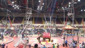 Shrine Circus at the La Crosse Center @ La Crosse Center | La Crosse | Wisconsin | United States