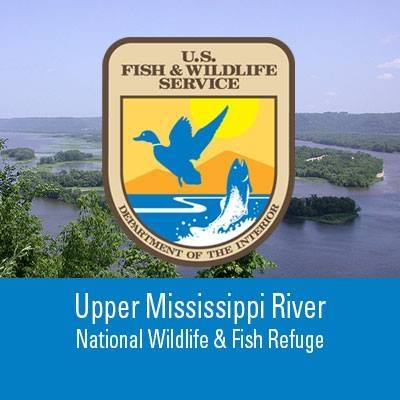 Trempealeau nwr offers special waterfowl hunt for persons for Mississippi river fish