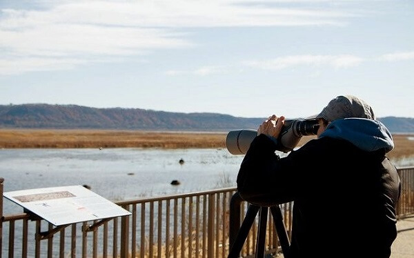 Migration Naturalists at Brownsville Overlook