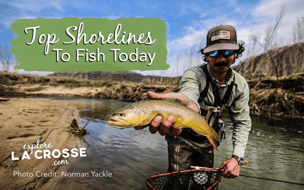 Top Shorelines to Fish Today